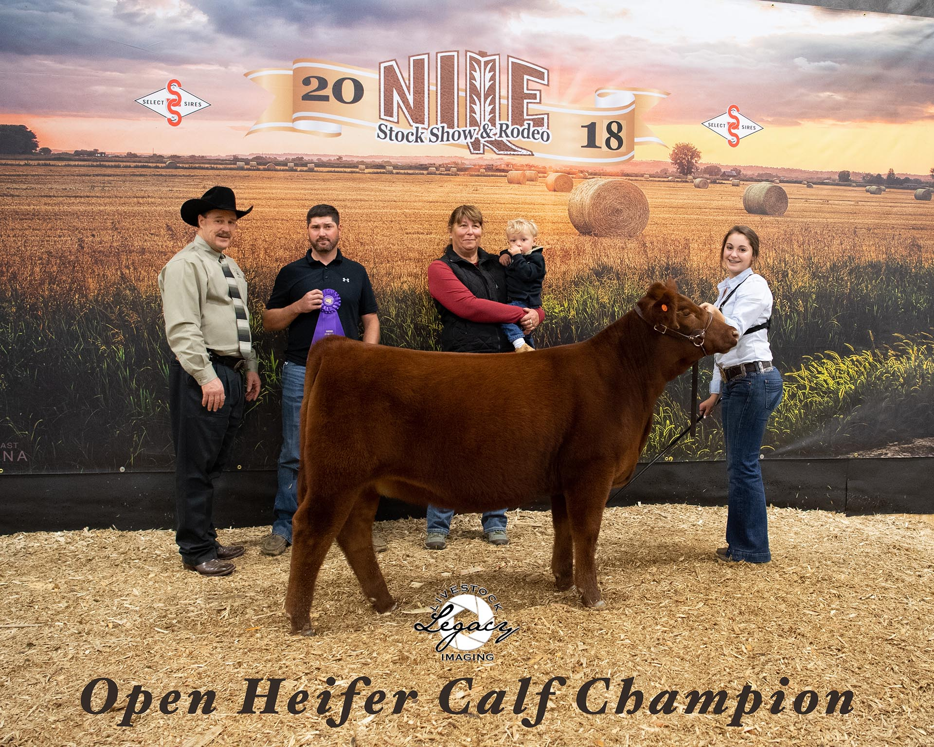 2018 NILE Red Angus Heifer Champion